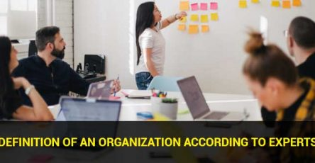 definition of an organization according to experts